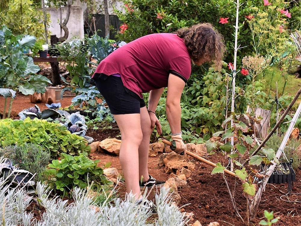 Our Permaculture Garden